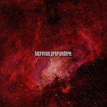 "Lacrimas Profundere - ""Bleeding The Stars"""