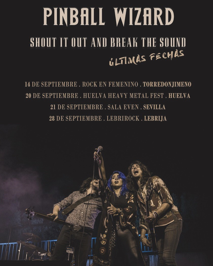 """Pinball Wizard - """"Shout It Out And Break The Sound"""" Tour"""